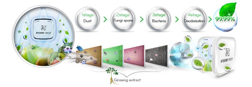 هایژن فرش چیست